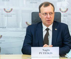 Centro partijos -tautininkų pirmininkas Naglis Puteikis | lrs.lt nuotr.