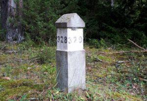 Miško kvartalinis stulpas | lrv.lt nuotr.