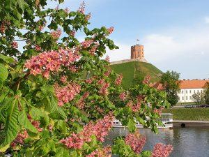 Praėjusių metų rugpjūtį Gedimino pilies bokštą aplankė 43 tūkst. žmonių | A. Šileikio, LNM nuotr.