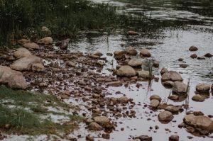 Lietuvoje paskelbta hidrologinė sausra | J. Brastovickytės-Stankevič nuotr.