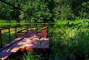 Gražutės regioninis parkas | vstt.lt nuotr.