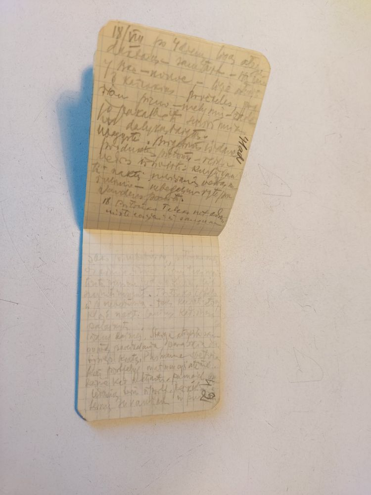 Aleksandro Stulginskio lagerio dienoraštis | genocid.lt nuotr.