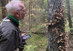 Gamtosaugos ekspertas Giedrius Švitra | M. Midverytės nuotr.