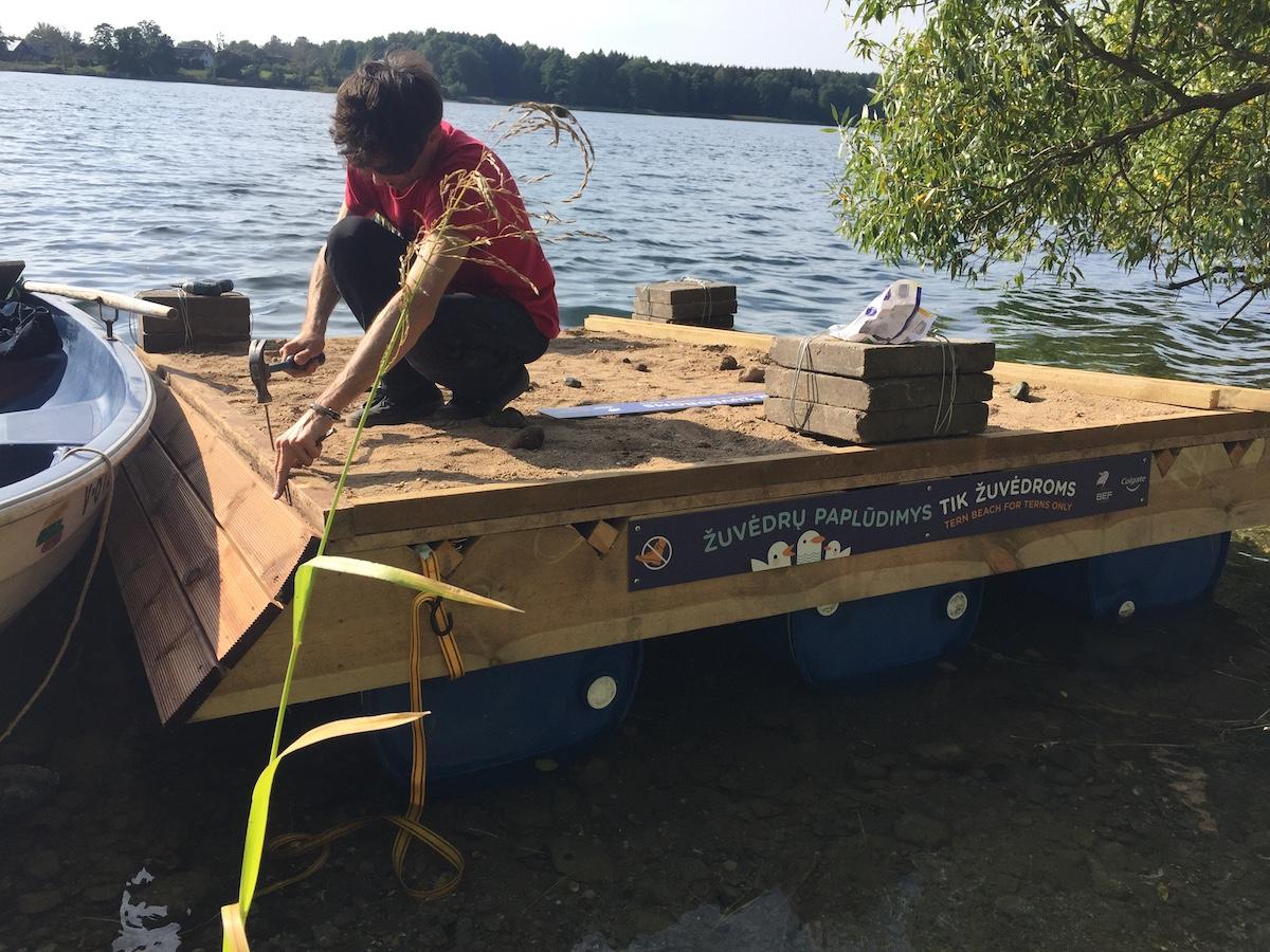 Trakų rajone – dirbtinė sala žuvėdroms | Baltijos aplinkos forumo nuotr.