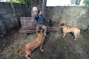 Šunų darželis   kaupa.lt nuotr.
