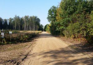 Miško kelias | am.lt nuotr.