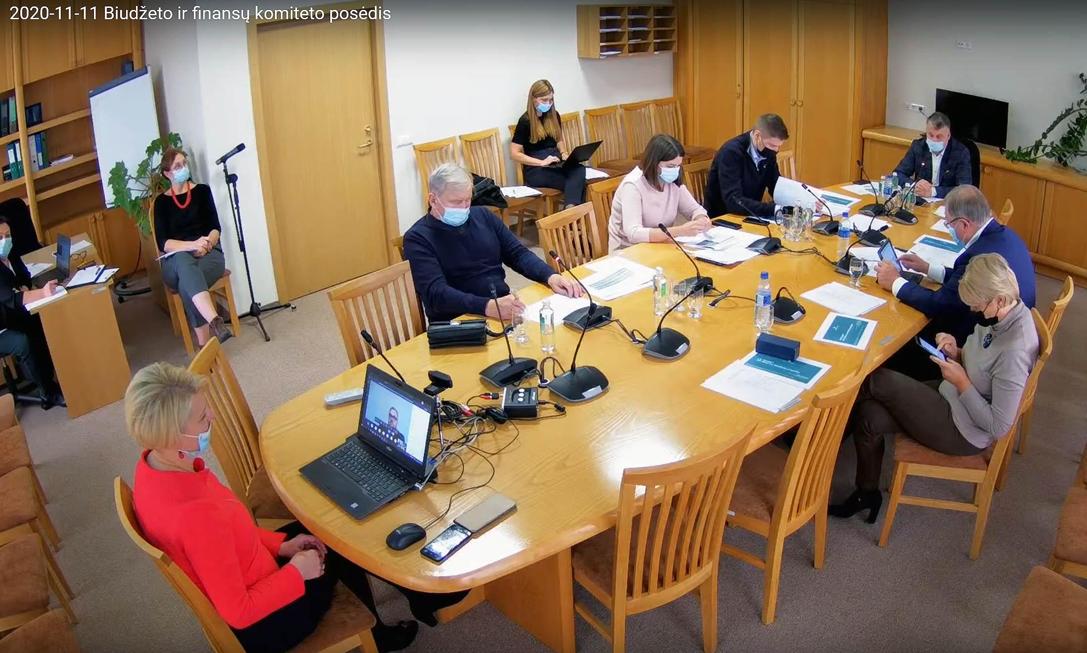 Seimo biudžeto ir finansų komiteto posėdis 2020-11-11 | Alkas.lt ekrano nuotr.