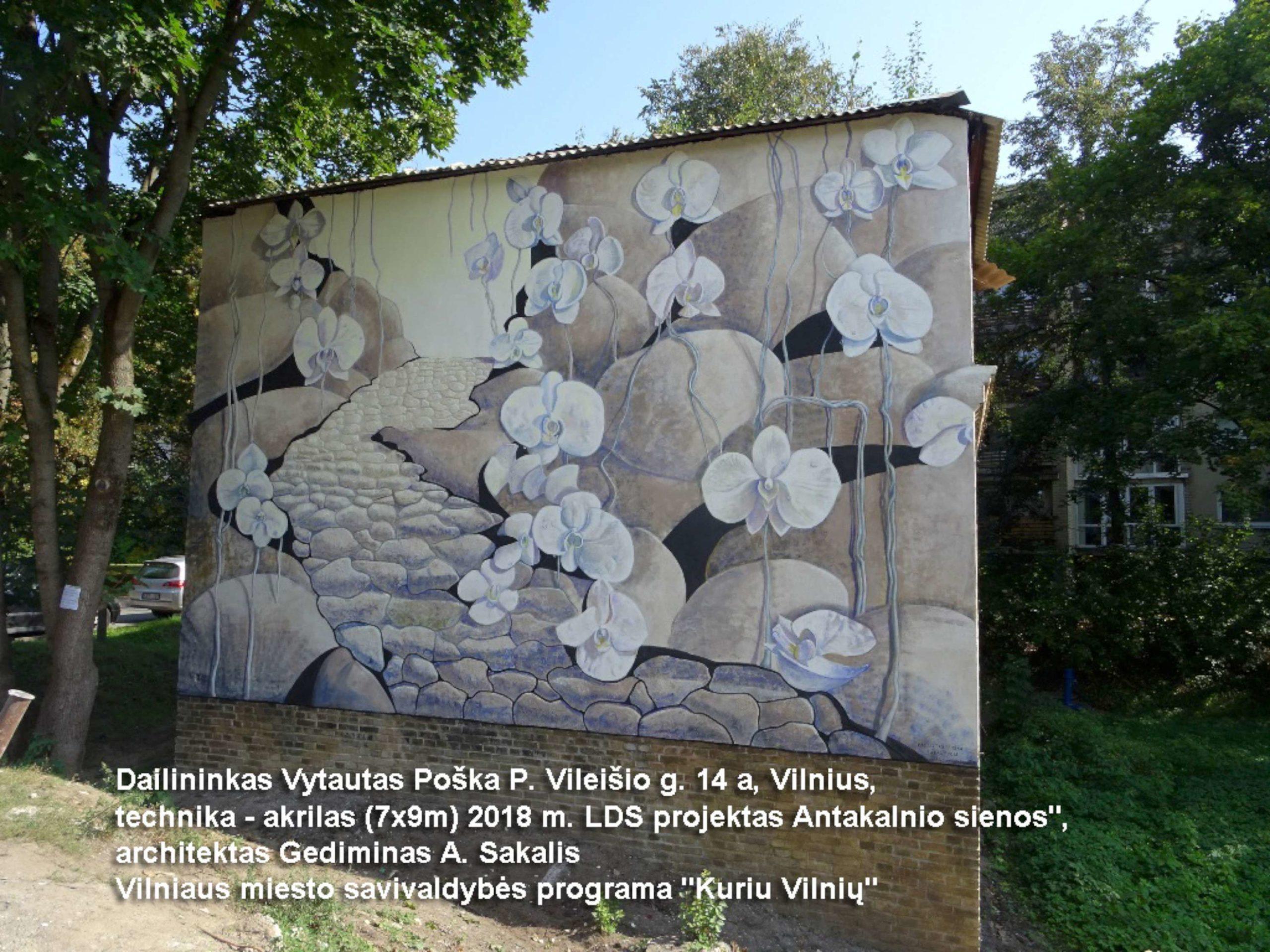 V Poška. Namo fasadas Vilniuje P. Vileišio g. - Takas, technika - akrilas, 7x9 m., 2018 m. | rengėjų nuotr.